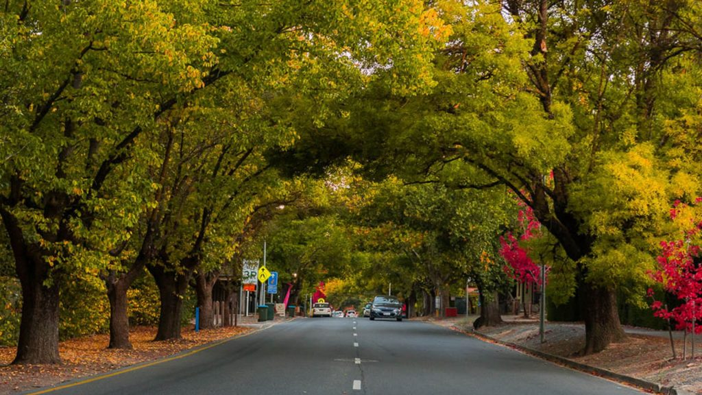 visit hahndorf this valentine's day
